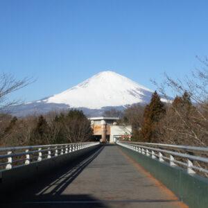 御殿場プレミアム・アウトレットからの富士山