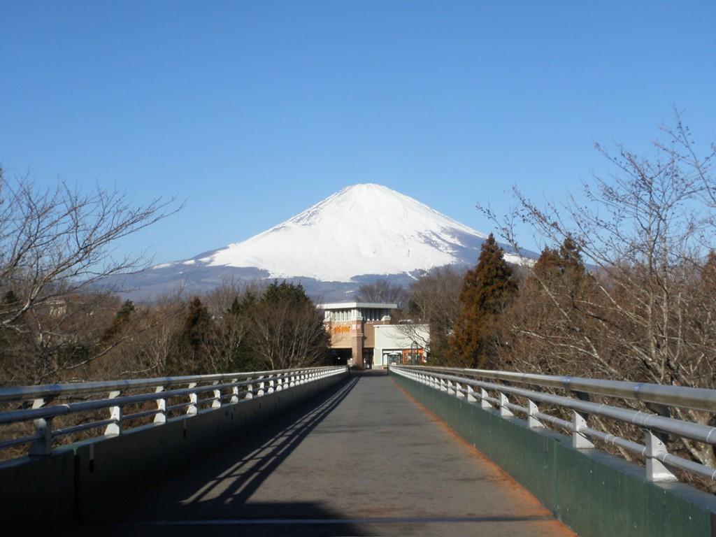 夢の大橋(御殿場プレミアム・アウトレット)