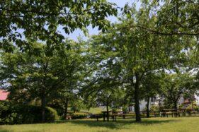 神場南公園