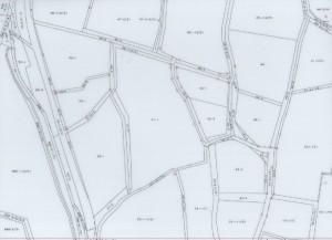 地籍調査後 地籍図(イメージ)
