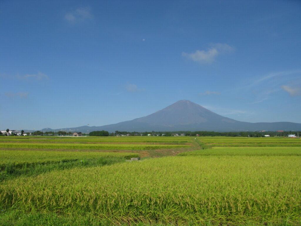 御殿場市は、静岡県東部にある世界遺産「富士山」の麓の高原都市です